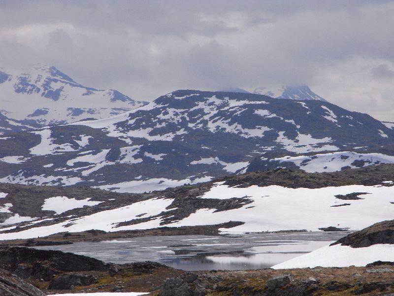 Jungsi - Norwegen 2010 303
