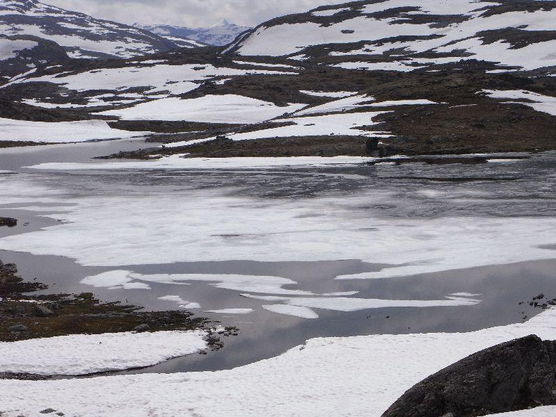 Jungsi - Norwegen 2010 310