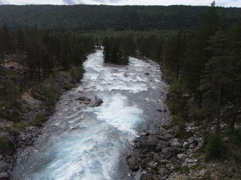 Jungsi - Norwegen 2010 319