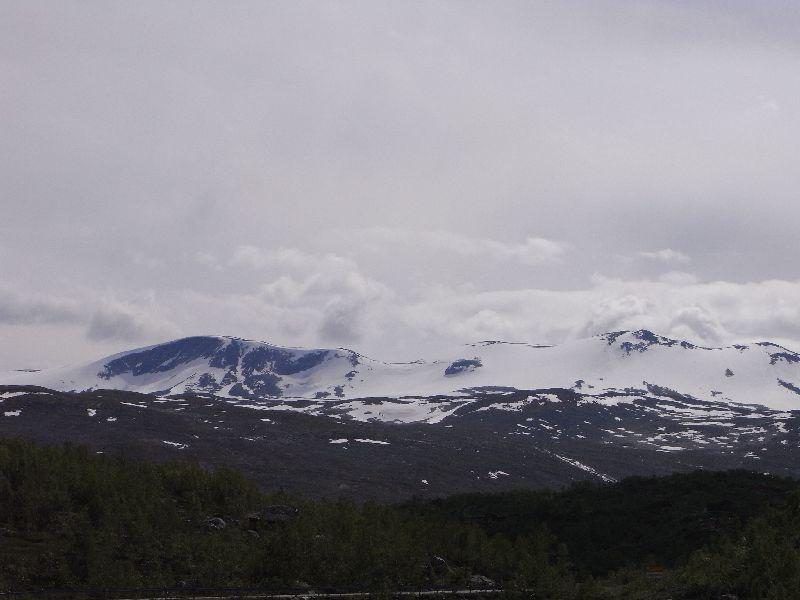 Jungsi - Norwegen 2010 321