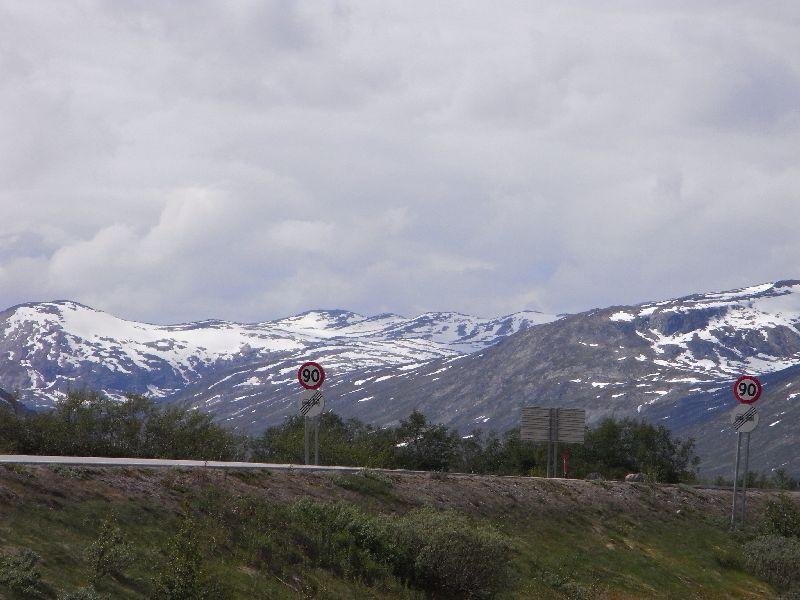 Jungsi - Norwegen 2010 322