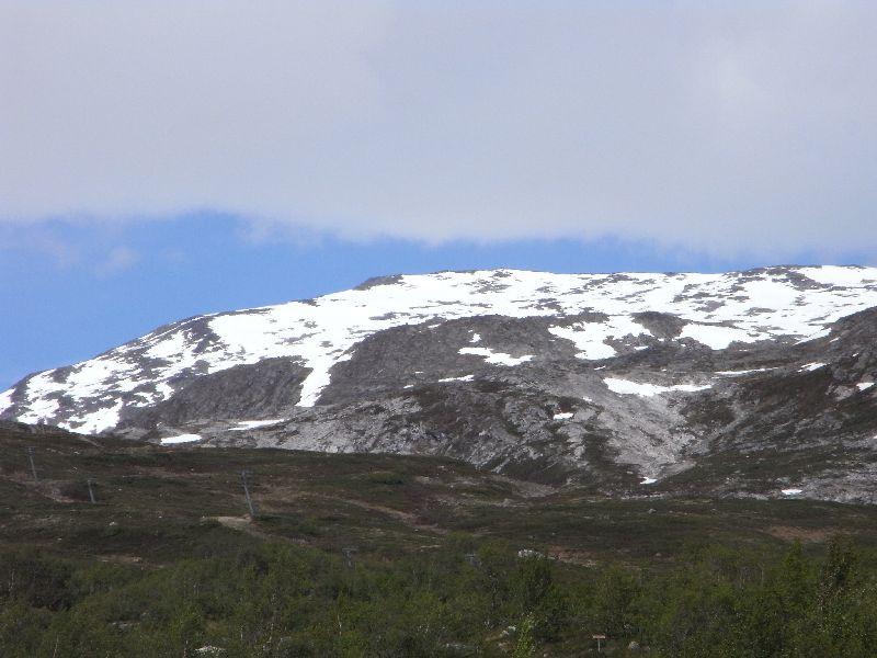 Jungsi - Norwegen 2010 323