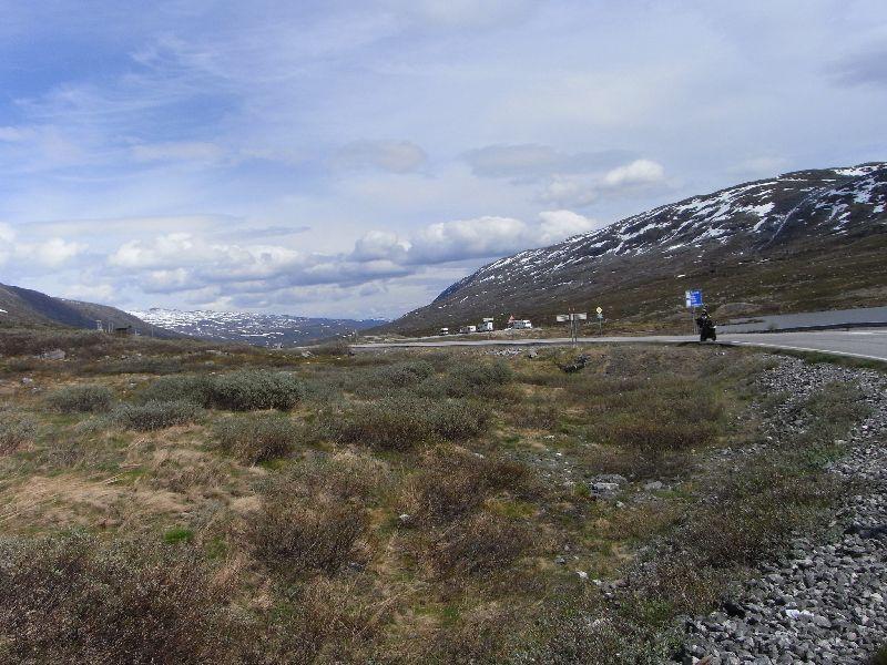 Jungsi - Norwegen 2010 327
