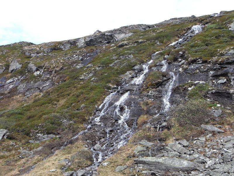Jungsi - Norwegen 2010 332