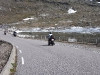 Jungsi - Norwegen 2010 298