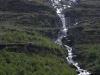 Jungsi - Norwegen 2010 318