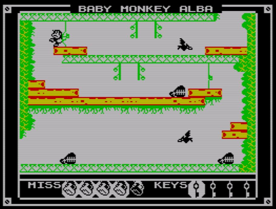 Baby Monkey Alba - Screen